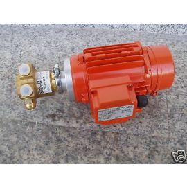 Pumpe Speck DS-360.0048 Druck Braendle+Geiger GmbH 110 V Messingpumpe P9/719
