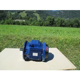 ABB Motor M3AA 132 SA - 2 Pol umschaltbar 3 x 690 V 6,8 kW Elektromotor P15/427